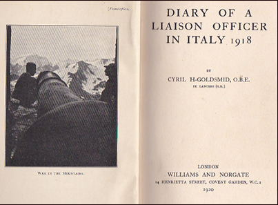 Diary of a Liaison Officer in Italy 1918 # 21738