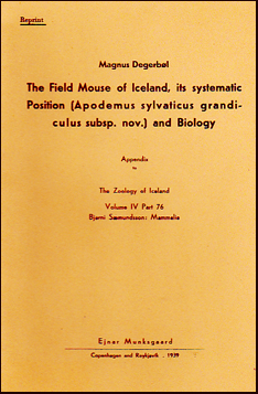 The field mouse of Iceland # 21926