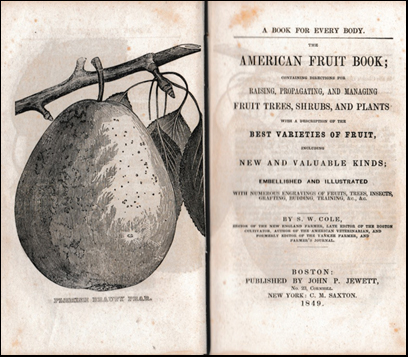The American Fruit Book # 42201