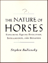 The nature of Horses # 17070